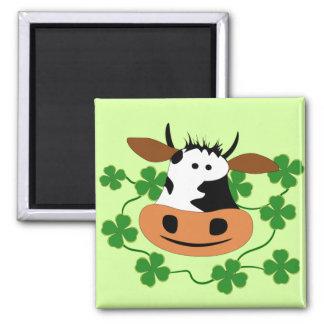 Vaca Imán Cuadrado