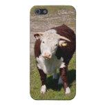 Vaca iPhone 5 Protector