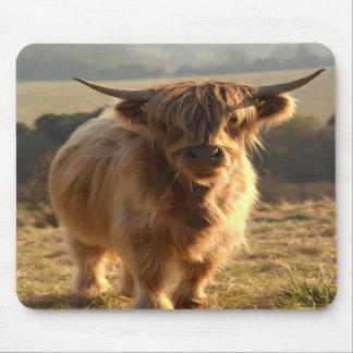 Vaca joven de la montaña tapete de ratón