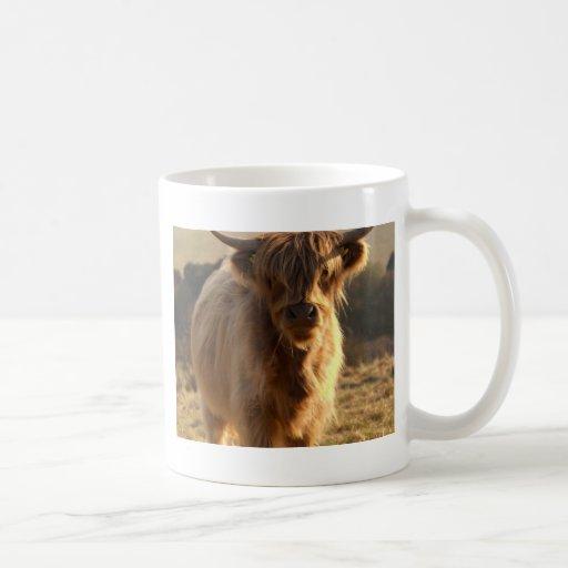 Vaca joven de la montaña taza