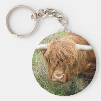 Vaca lanuda de la montaña llavero redondo tipo pin