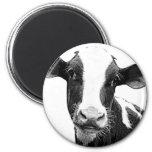 Vaca lechera - becerro blanco y negro de la lecher imanes para frigoríficos