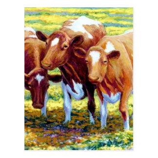 Vaca lechera de las vacas en imagen de la pintura postal