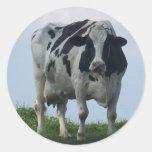 Vaca lechera de Vermont Pegatina Redonda