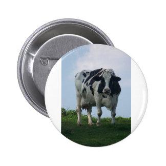 Vaca lechera de Vermont Pin