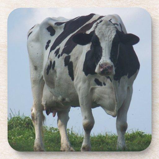 Vaca lechera de Vermont Posavasos De Bebida