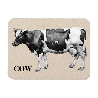 Vaca lechera imán rectangular