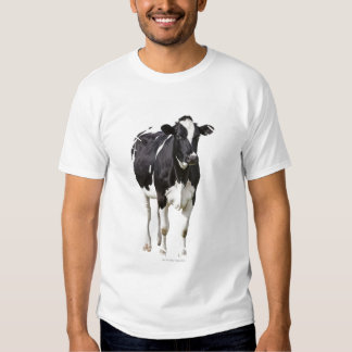 Vaca lechera (tauro del Bos) en el fondo blanco Remera