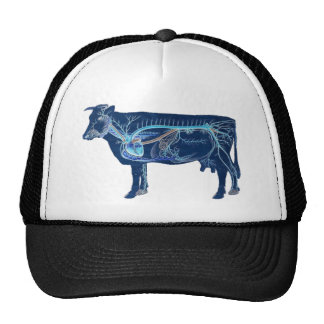 Vaca linda anatómica gorro