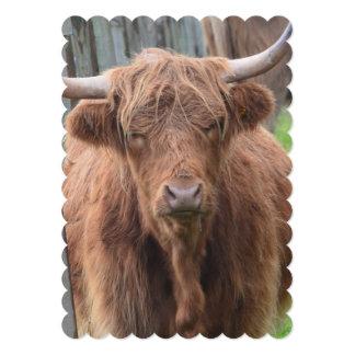 Vaca linda de la montaña por la cerca invitacion personal