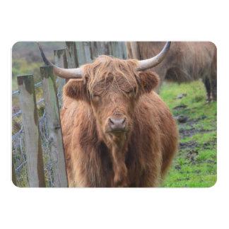 Vaca linda de la montaña por la cerca invitacion personalizada
