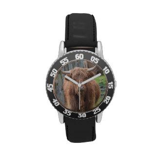 Vaca linda de la montaña por la cerca relojes de mano