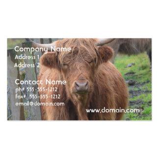 Vaca linda de la montaña por la cerca tarjetas de visita