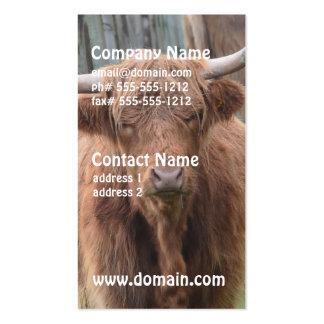Vaca linda de la montaña por la cerca plantillas de tarjeta de negocio