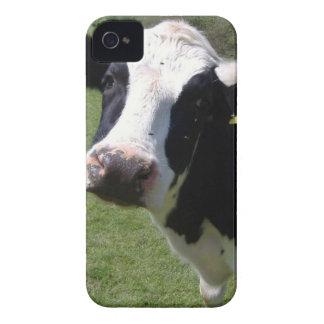 Vaca linda iPhone 4 carcasa