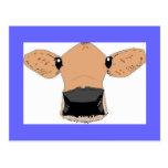 Vaca linda postales