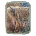 Vaca melenuda funda para iPads
