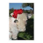 Vaca meridional papelería personalizada