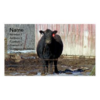 Vaca negra de Angus en invierno Plantilla De Tarjeta De Visita