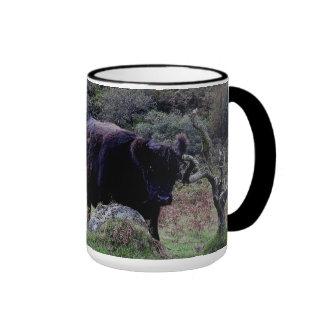 Vaca negra de Dartmoor Galloway que rasguña en árb Tazas