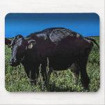 Vaca negra grande en un mousepad tapetes de ratones