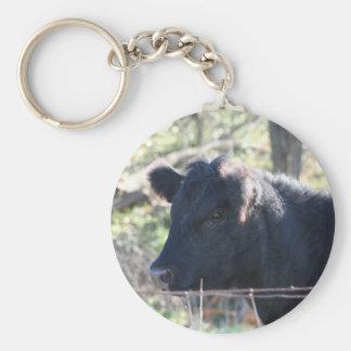 Vaca negra que mira fuera de la cerca llavero