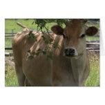 Vaca Notecard del jersey Felicitaciones