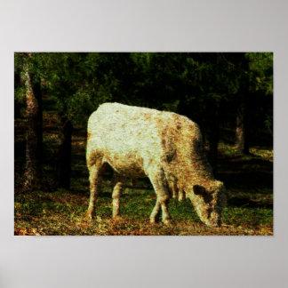 Vaca Poster