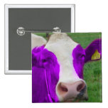 vaca púrpura pin