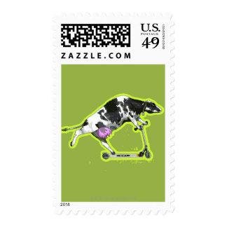 Vaca que monta una vespa sellos