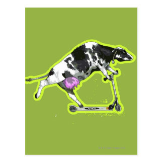 Vaca que monta una vespa tarjeta postal