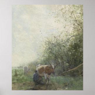 Vaca que ordeña, Willem Maris Póster