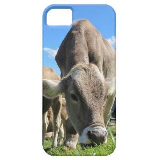 Vaca que pasta el caso del iPhone 5 Funda Para iPhone SE/5/5s