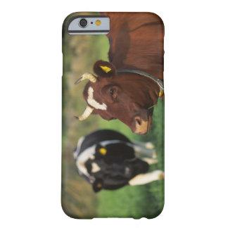 Vaca que pasta, Suecia Funda De iPhone 6 Barely There