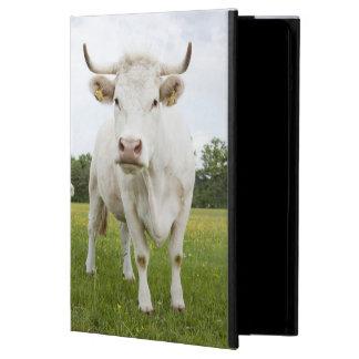 Vaca que se coloca en campo herboso
