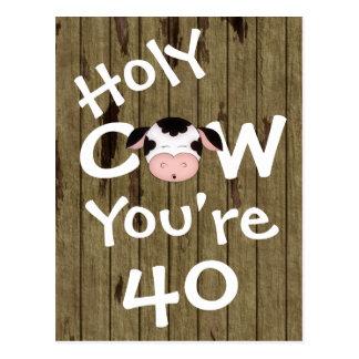Vaca santa divertida usted es postal de 40 cumplea