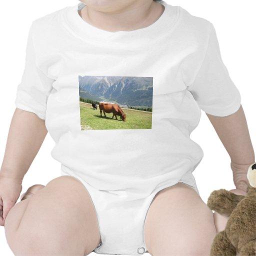 Vaca suiza camiseta
