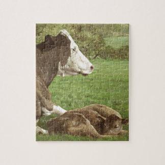 vaca y becerro en campo rompecabezas con fotos