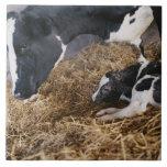 Vaca y becerro en heno tejas  ceramicas