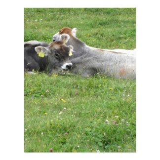 Vaca y becerro en un prado del verano plantilla de membrete