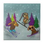 Vacaciones del esquí del perrito azulejo