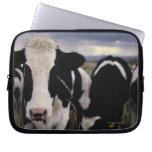 Vacas 3 mangas portátiles