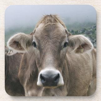 Vacas alpinas posavasos de bebida