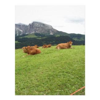 Vacas de Brown en pastos alpinos en verano Membrete Personalizado