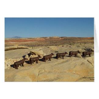 Vacas de Brown que caminan en el desierto Tarjeta De Felicitación