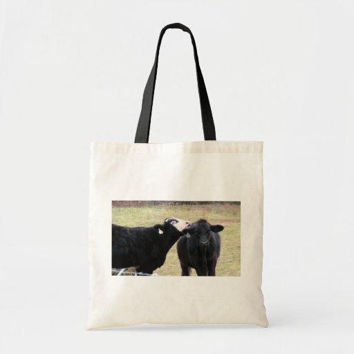 Vacas de la madre que lamen a su niño bolsa