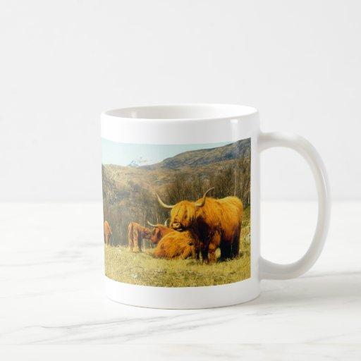 Vacas de la montaña tazas