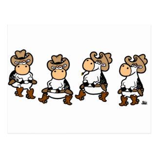 Vacas de Linedancing Tarjetas Postales