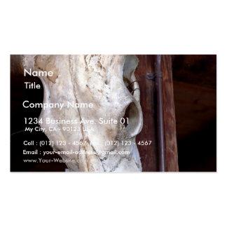 Vacas de los cuernos de los huesos de los cráneos tarjetas de visita