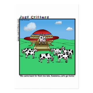 Vacas de los extranjeros tarjeta postal